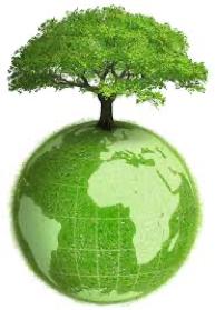 recyclage tungstène écologie